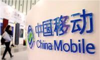 中国移动:无线上网收入1877亿元,占通信服务收入比重过半