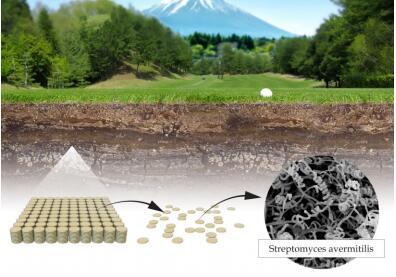 日本科学家大村智在链霉菌菌株中寻找新型抗菌物质。他从取自日本的一份土壤样品中分离出这种微生物并在实验室中进行培养。随后他从数千份实验室样品中选出50份具有潜力的样品并在其中一份样品中最终提取到一种高度有效的抗菌物质,也就是后来广为人知的阿维菌素