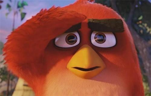 《愤怒的小鸟》37个市场票房第一_互联网头条
