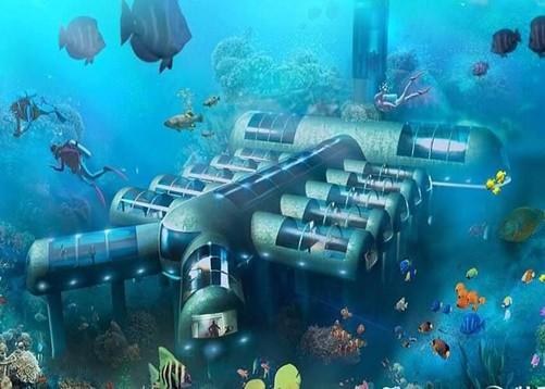 壁纸 海底 海底世界 海洋馆 水族馆 桌面 501_358